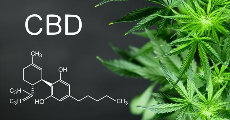 Image result for CBD and hormone